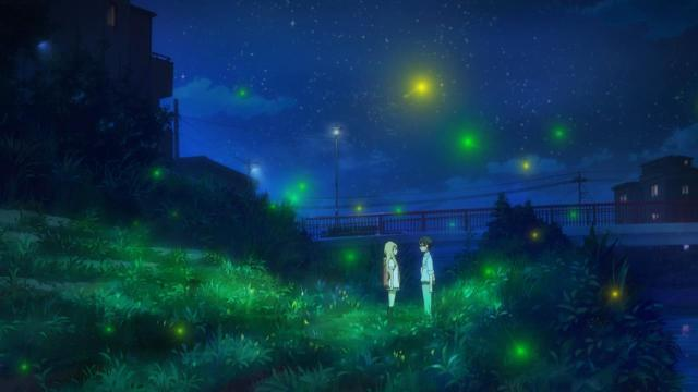 together with the fireflies